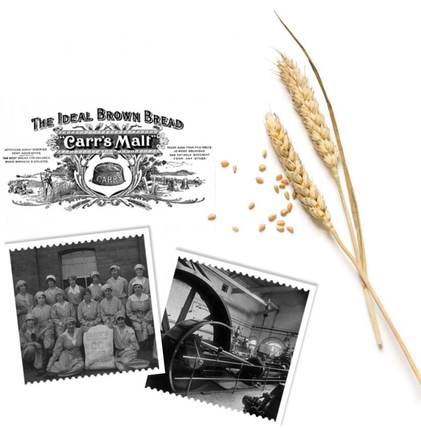 History of Carr's Flour