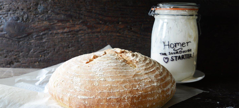 Sourdough starter kit_bread
